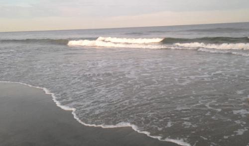 Amelia Island Hotel Deals Florida Oceanfront Condos Fernandina Beach Free Nights Beach Summer
