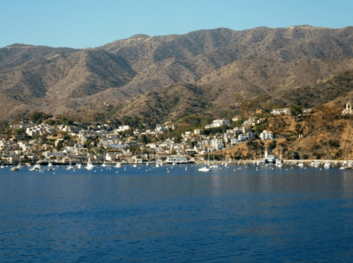 catalina cruise deals mexican cruise deals long beach cruises california