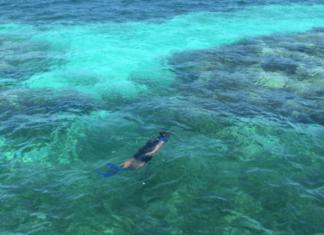 caribbean all inclusive resorts palm island grenadines private island resorts free dining Grenada