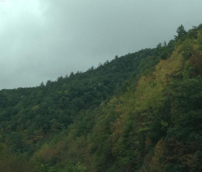 Huge Savings On Blue Ridge Amp Smoky Mountain Vacation Gvd