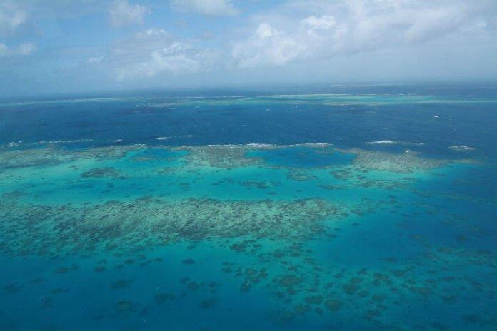 Cairns Australia trip savings bunjy jump see great barrier real coral sea