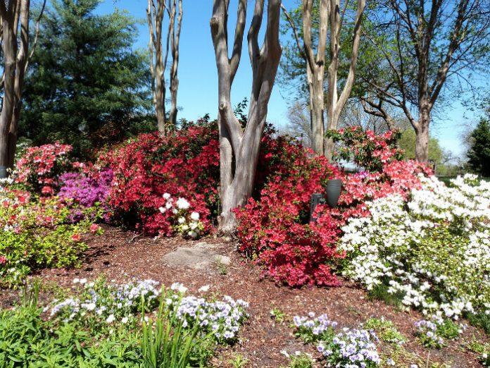 Dallas trip savings museums gardens zoo Texas vacation outings