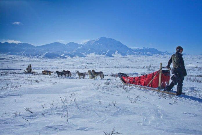 Denali National Park Vacation savings activities Alaska trip deal