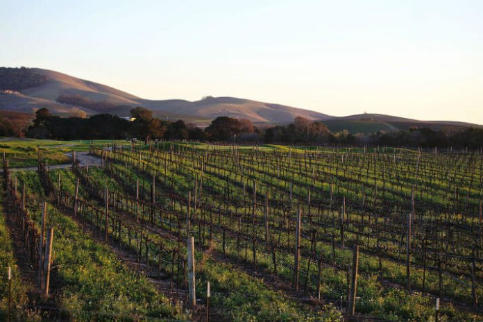 Discounted stay at Ivy Hotel Napa Valley wine tasting passes California trip deal