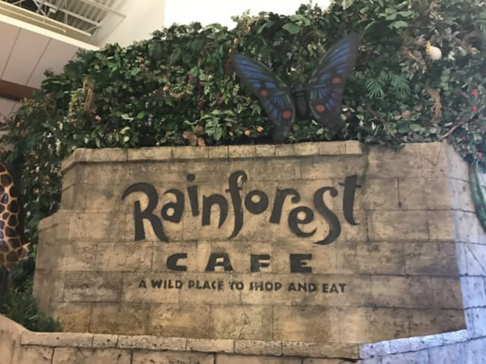 Save Money Landry's Select Club Free Dining Reward Program Bubba Gump Rainforest Cafe