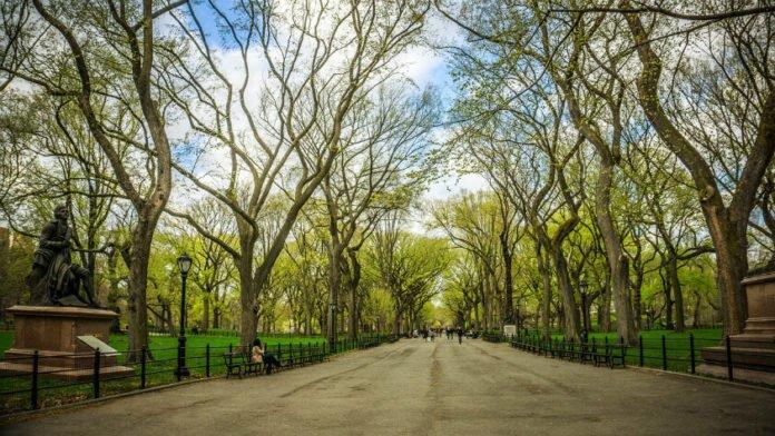 20% off Central Park Manhattan pedicab tour