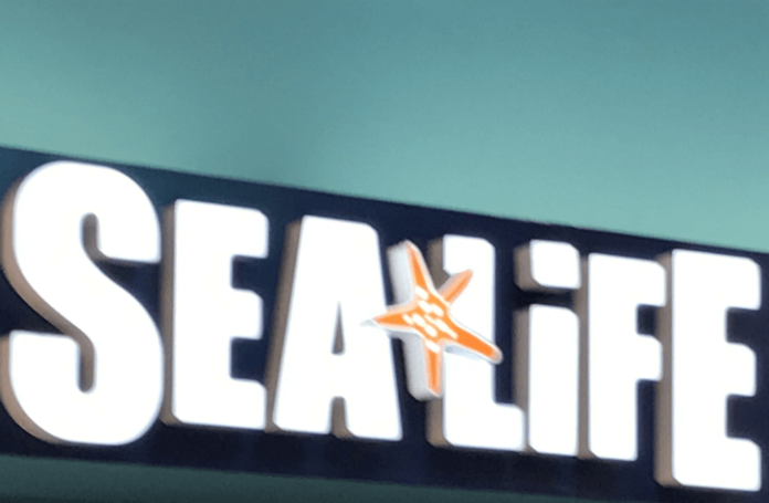 Unlimited visits & discounted prices for Sea Life Grapevine Mils texas