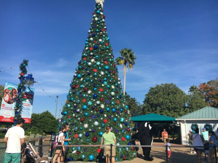 SeaWorld Christmas Flash Sale Dining With Rudolph Reserved Seating for Christmas New Years Shows