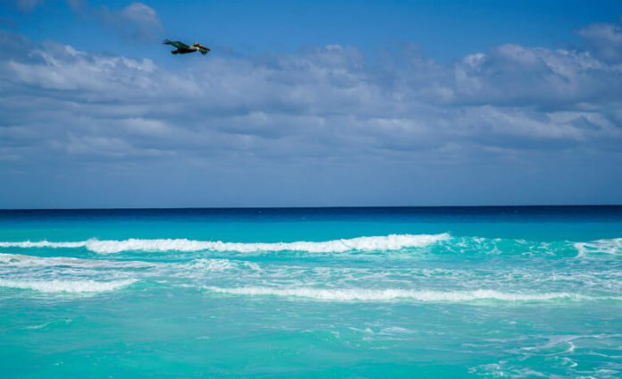 Turqouize Hyatt Ziva Cancun half off discounted Mexican vacation
