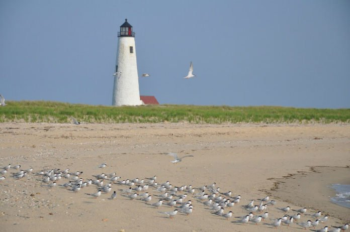 Win free stay at Cottages at Nantucket Boat Basin