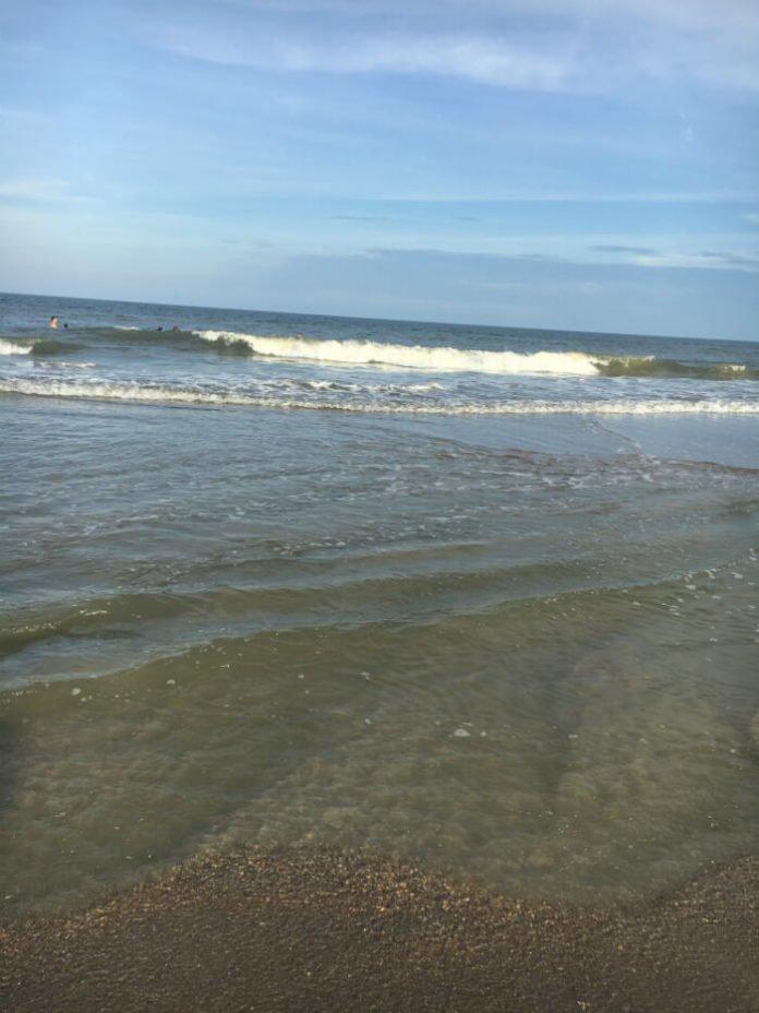 Amelia Island Beach Florida Coast