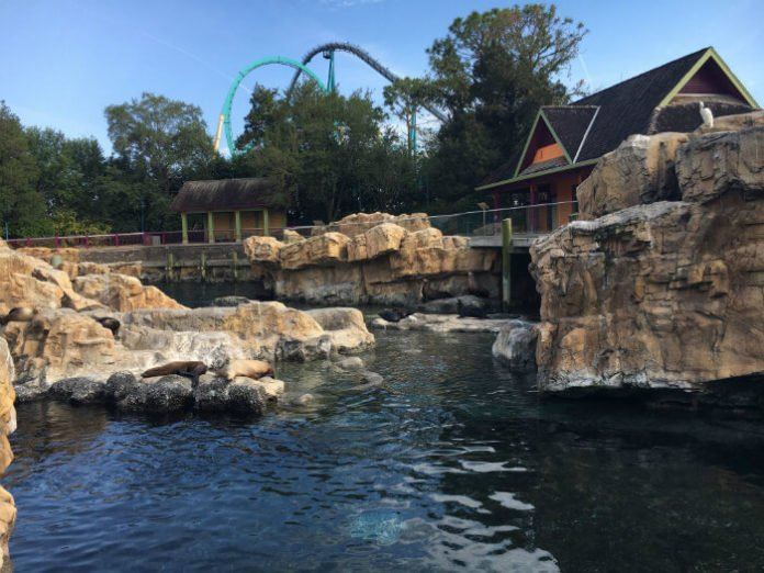 BOGO sale Busch Gardens Tampa SeaWorld Orlando in Florida