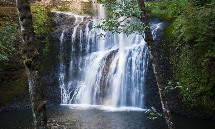 Discounted Willamette Valley Wine & Waterfalls Tour in Oregon leave from Portland