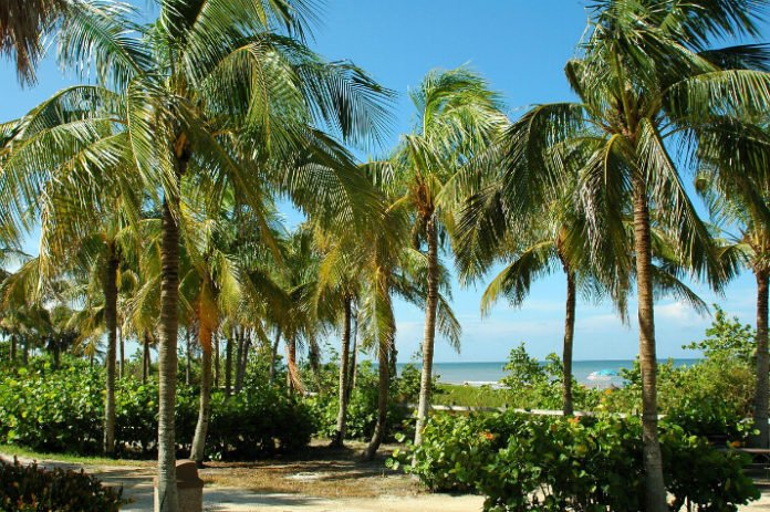 Win trip to Key West Florida Sweepstakes airfare stay at Hyatt Key West