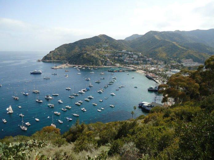 Cruise deals out of Long Beach to Ensenada Mexico & Catalina