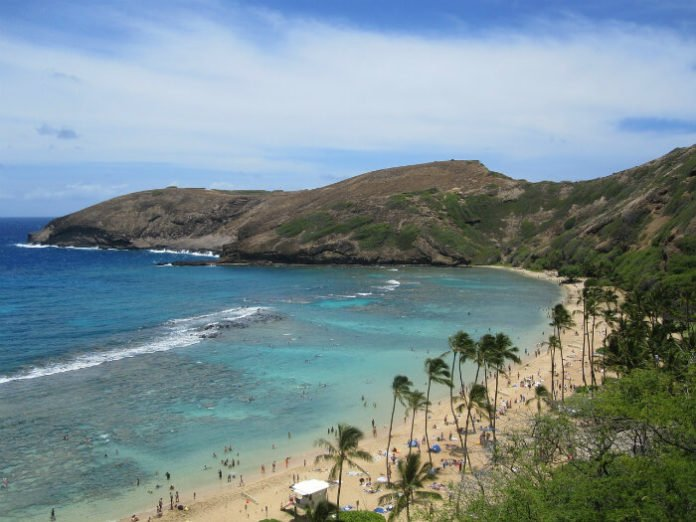 Win a free trip to Hawaii through Alaska Airlines free roundtrip airfare hotel car rental