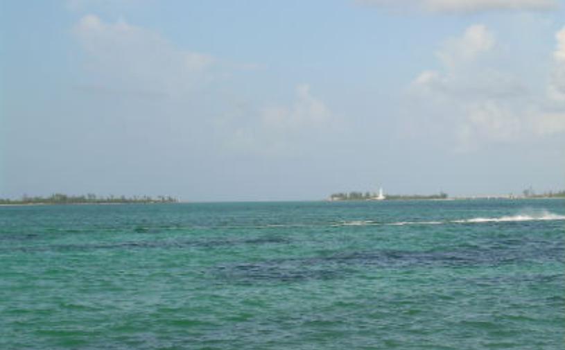 Cheap Cruises Out Of Charleston Green Vacation Deals - Cheap bahamas cruise