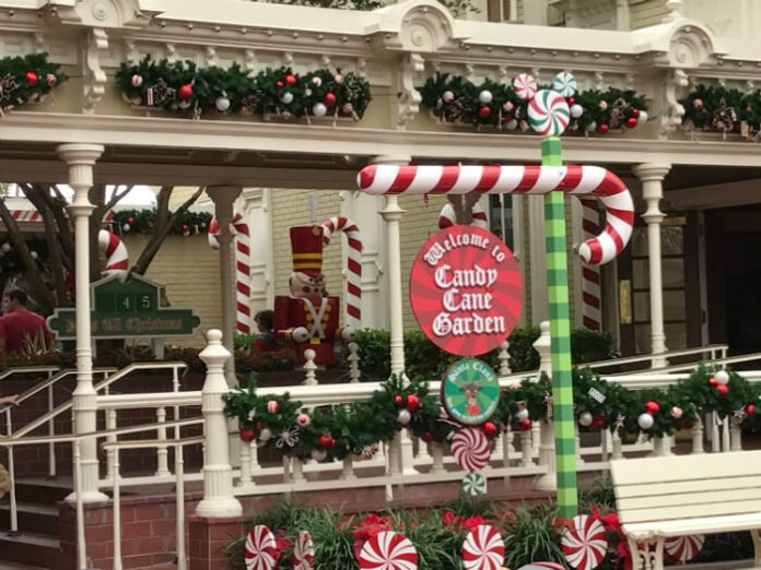 7 things to do in Orlando for Christmas LEGOLAND WDW SeaWorld Universal Magic Show Busch Gardens Lowry Park Zoo