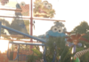 $10 Preschool Card for unlimited admission to SeaWorld San Diego in Southern Caliornia