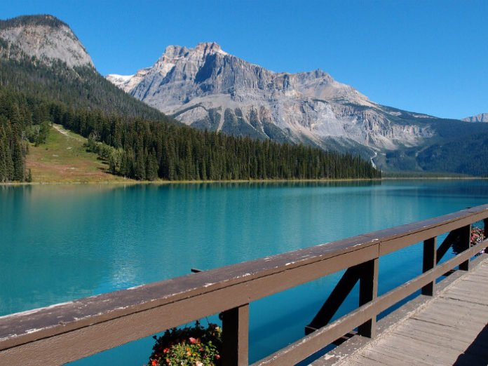 Discounted price for Canadian Rockies tour starting in Calgary Alberta