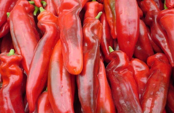 Santa Anita Southern California LA chili cookoff discount price