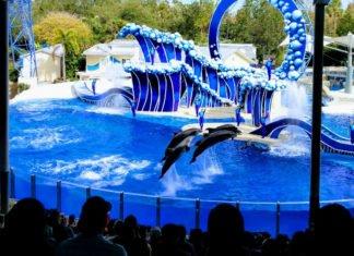 SeaWorld Aquatica Orlando Busch Gardens Adventure Island Tampa discounted tickets