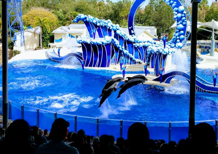 SeaWorld Aquatica Orlando Busch Gardens Adventure Island Tampa Discounted  Tickets