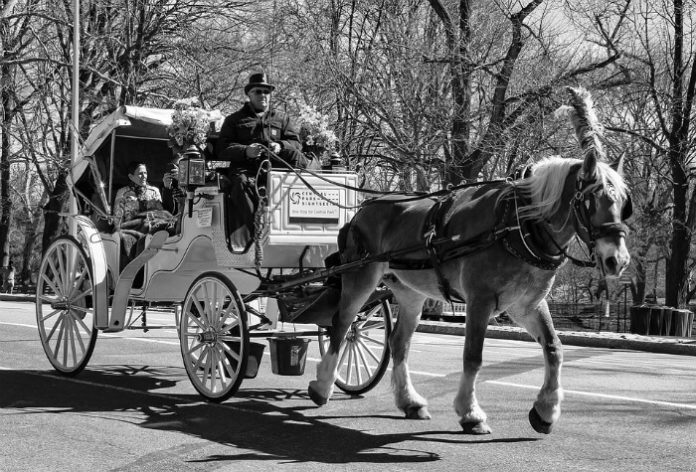 Top 3 Valentine's Day activities in New York City horse & carriage ride jazz concert dinner cruise