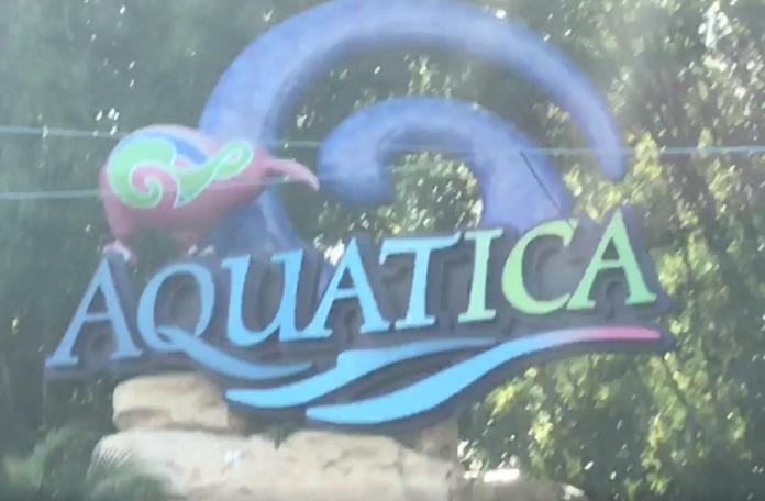 Save $10 off Aquatica water park in Orlando Florida