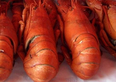 Miami Lobster & Shrimp Festival with live music & good food half off ticket