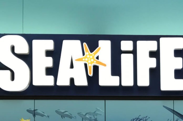 Use promotional code to save money on SEA LIFE Minnesota in Twin Cities