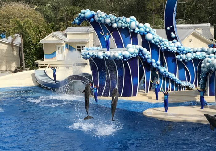 Free Busch Gardens Tampa Seaworld Orlando Family Trip Green Vacation Deals