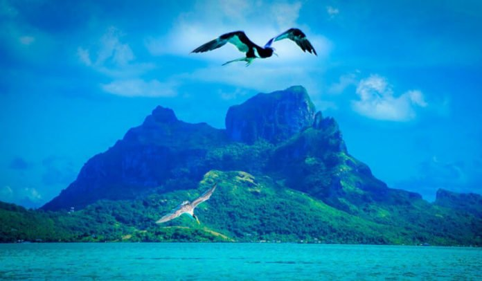 Discounted cruises out of LA to Hawaii Samoa French Polynesia