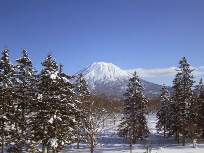 Top 10 Niseko Village Japan ski-in ski-out hotels best rated