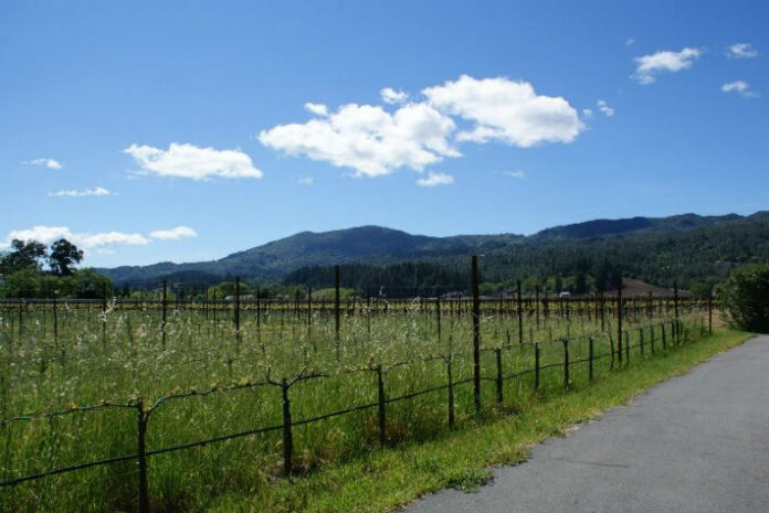 Win a free trip to Napa Valley sweepstakes