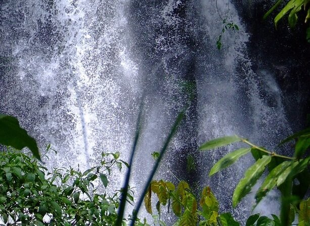 Philippines tour see waterfalls volcano forest flowers hot springs savings