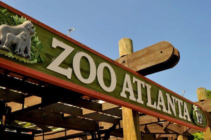 Save money at Easter festivities at Zoo Atlanta in Georgia
