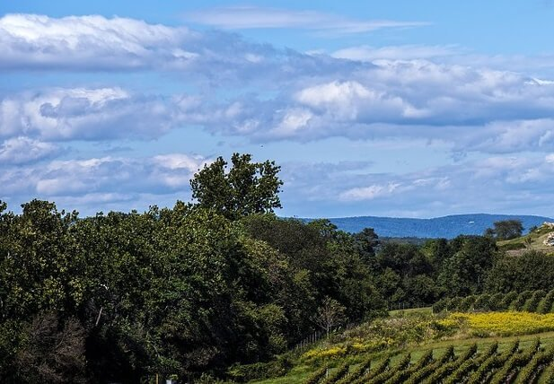 Monticello Wine trail tour from Virginia Beach $75 off