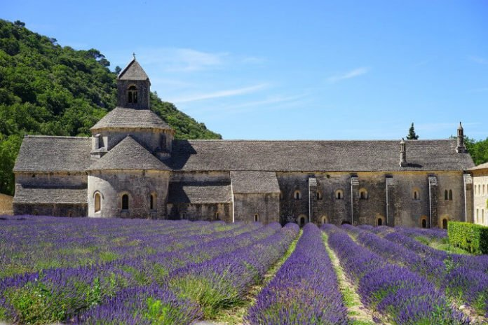 Win a free trip to Provence France win essay contest