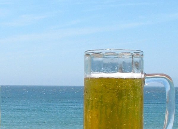 Save money on San Diego Ocean Beach Beerfest bring dog deal