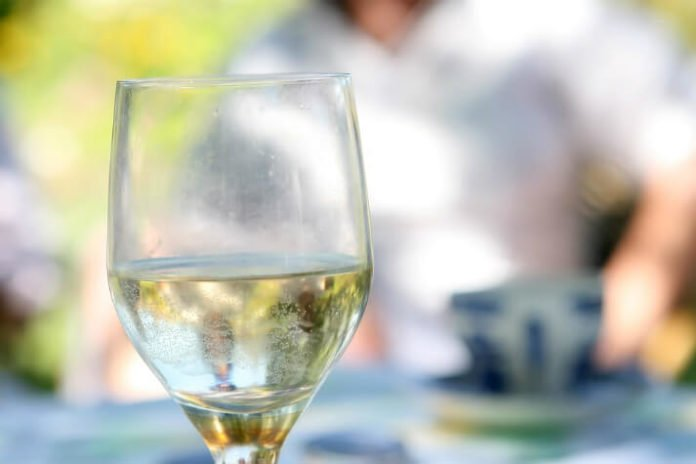 Discounted South Shore Summer Wine Fest at The Hedge House Museum in Boston