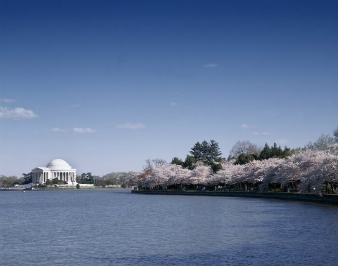 Discount prices for Washington DC cruises, tours, drinking festivals