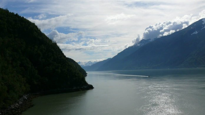 up to 30% of summer cruises from Seattle to Alaska, BC