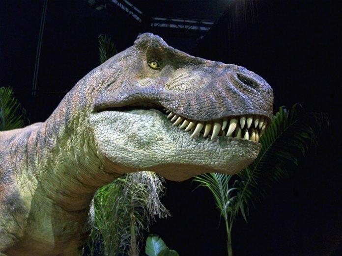 Discover-Dinosaurs-Time-Trek-Exhibition-CenturyLink-Center-Omaha-Nebraska-deal