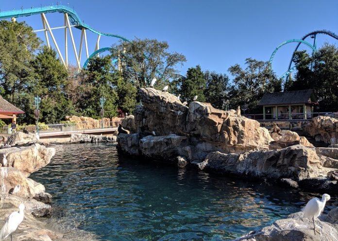 SeaWorld Aquatica Orlando theme park water park flash sale for Florida residents