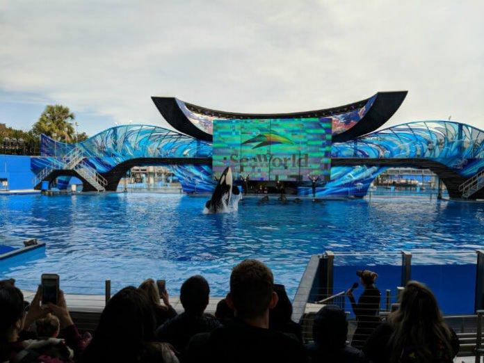 SeaWorld Orlando Florida fun card ticket deal save money