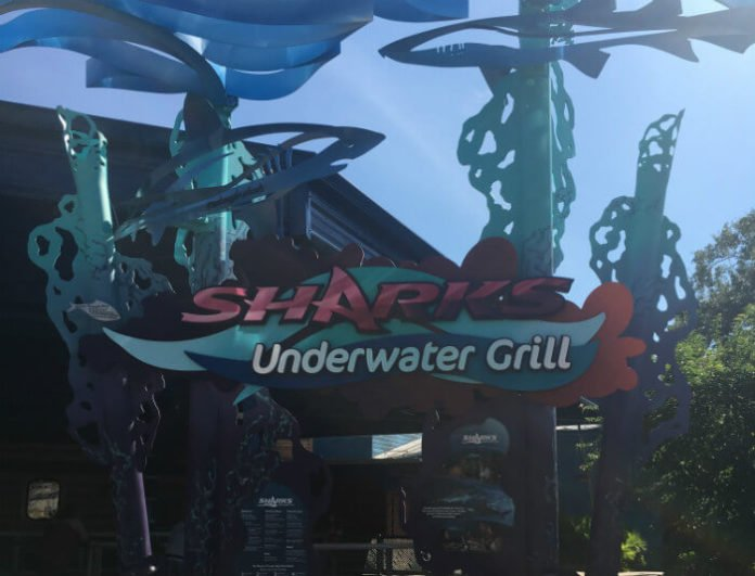 Get free beer at SeaWorld in Orlando & drink specials during happy hour