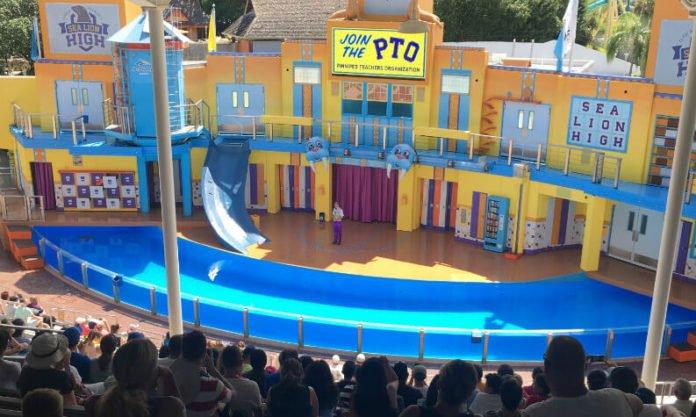 Texas teachers get free unlimited admission to SeaWorld San Antonio theme park