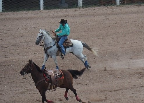 Win a free trip to Cheyenne Frontier Days Rodeo
