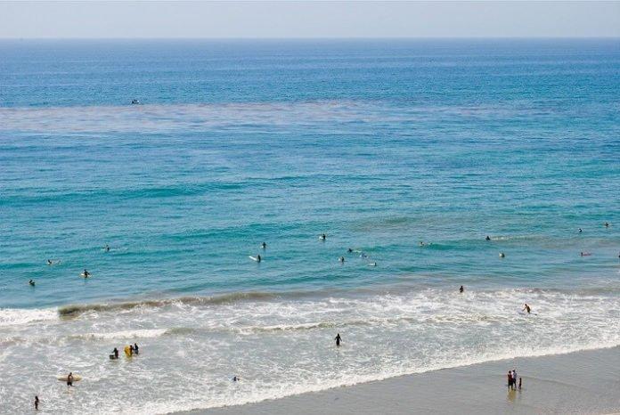 Save money with Best of California Hilton hotel offer in San Diego Del Mar La Jolla Carlsbad Beach Torrey Pines Gaslamp